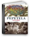 capa do livro mayombe de pepetela
